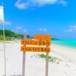 【日本No.1の美しい海に決定!(ドローン空撮職人調べ2017年度)】