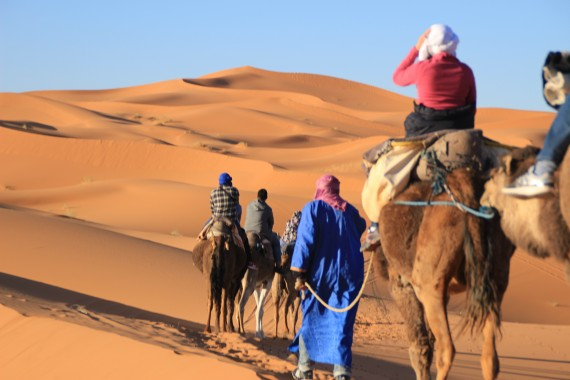 ラクダでサハラ砂漠