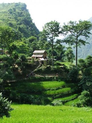 nepal-978348_640