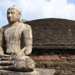 【職業旅人仲間レポート】スリランカは絶景の宝庫!!おすすめの観光地をご紹介