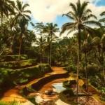 【職業旅人】インドネシアはバリ島!おすすめのバリ島旅行!