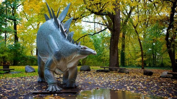 Cleveland-Museum-Of-Natural-History-60158