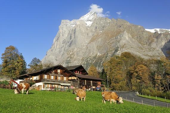 スイス 山