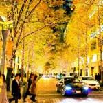 【職業旅人仲間レポート】アメリカボストン旅行のおすすめ4ポイントをご紹介